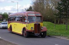 IMGP0094 (Steve Guess) Tags: uk england bus museum surrey motors gb cobham regal weybridge brooklands aec byfleet
