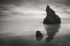 Two Rocks and a Bird (ktg619) Tags: ocean longexposure blackandwhite beach reflections monochromatic symmetry malibu reflective elmatador beautyinnature elmatadorstatebeach