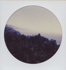 Big Sur (H Polley) Tags: ocean california color fog circle polaroid sx70 bigsur roadtrip 600 impossible instantfilm polaroidweek roundframe roidweek impossibleproject tipshow snapitseeit