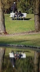 Bad Pyrmont (DeeDee Pix) Tags: park old people lake reflection love canon bench see bank stadt m3 palmengarten spiegelung palme liebe personen parkbank kurort kur niedersachsen 2016 ausruhen kurpark deedeepix badpyrmont staatsbad