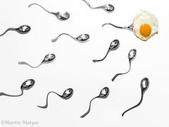 Biologie (Martin.Matyas) Tags: egg löffel ei spiegelei samen sperma eiweiss eitotter