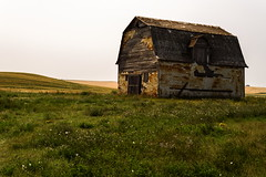 Tin Barn (TigerPal) Tags: abandoned barn tin ruin forgotten saskatchewan backroads derelict gravelroad dustyroad mossbank tinsiding