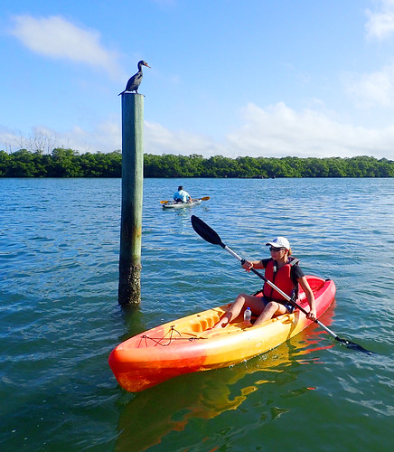 12_30_15  am paddleboard tour Lido Key 01