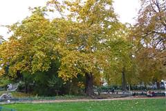 2015.10.25.071 PARIS - Parc Monceau (alainmichot93) Tags: paris france statue seine automne ledefrance jardin parc parcmonceau 2015 paris8mearrondissement