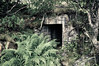 The Old And Hidden Bunker (A.Nilssen Photography) Tags: world 2 overgrown norway war wwii best bunker ww2 fortress troms atlantikwall dyrøy atlantikwal coastalfortress dyrøya hagenes dyroy