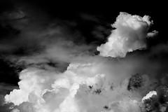 I desideri di Mia_05 (Redavide) Tags: white black clouds landscape freedom search thought nuvole child dream desire mia dreams wishes di suggestion bianco nero ricerca desires paesaggio libert sogno bambina the sogni pensiero desiderio onirico desideri i suggestione