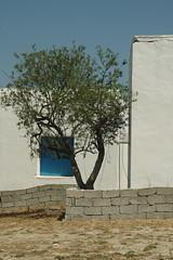 DSC_0370 (chaudron001) Tags: grece favoris