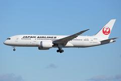 JA828J   B788   JAPAN AIRLINES   KLAX (Ashley Stevens images) Tags: canon airplane eos los airport angeles aircraft aviation aeroplane civil lax klax ja828j