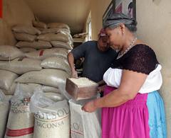 MAZ DICONSA (diconsa_mx) Tags: tienda venta hidalgo maz comunitaria diconsa