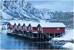 rorbuer (HP003436) (Hetwie) Tags: winter snow nature norway night landscape see vakantie sneeuw natuur zee avond landschap eiland svolvr noorwegen nordland noorderlicht svinya huisjes rorbruer svolvr svinya