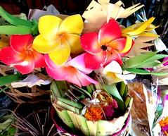 Offermandje Bali (Gerda Le Blanc) Tags: flowers bali nature fantasy offering tradition hindu kuta odalan