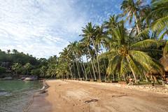 IMG_9113_edited-1 (Lauren :o)) Tags: ocean sea beach thailand island paradise kohtao turtleisland desertisland saireebeach sairee