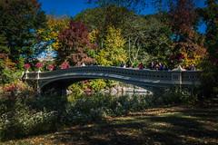 Bow Bridge - Central Park, NY (Richard Hedrick) Tags: newyorkcity newyork manhattan centralparknewyork bowbridge firstcastironbridgeinpark