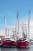 Boats at Tarpon Sponge Docks (Woodwiddler) Tags: shrimpboats tarponspongedocks