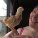 Margaret the chicken at 3 and a half weeks old with Nadja smiling