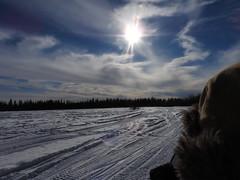 DSCN0987 (delirious_equilibrium) Tags: snow alaska fairbanks snowmobiling snowmachining