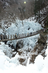 icicle (miyomiyoko) Tags: bridge winter white cold ice nature frozen icicle icicles