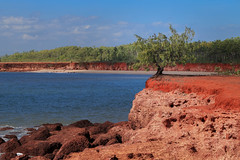 Tiwi Red (robertdownie) Tags: ocean blue trees red sea sky orange cliff seascape tree green beach water rock clouds island islands coast sand rocks waves earth nt australia shrub northern bathurst territory tiwi