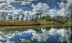 Panorama tichelgat, De Doort   --HDR-- (Frank Berbers) Tags: clouds reflections landscape wolken nuages paysage landschaft hdr highdynamicrange landschap reflexionen weerspiegeling reflectie limburgslandschap tichelgaten middenlimburg réflexions imagerieàgrandegammedynamique dedoort nikoncoolpixp610