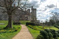 Castle park Arundel (Matthew Soar) Tags: easter nikon arundel d800 2470mm28