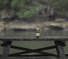 god's tears over an empty bottle (bart.kwasnicki) Tags: park sydney national