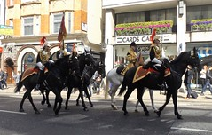 blues & royals-household cavalry mounted regiment-freedom of the city of london parade 20 04 2016 (4) (philipbisset275) Tags: city london freedom unitedkingdom parade cityoflondon centrallondon bluesroyals englandgreatbritain householdcavalrymountedregiment 20042016