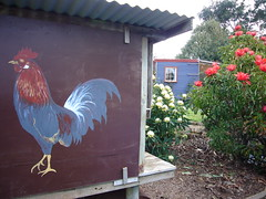 P1080126-chook house-waratahs-O (elisabethgleave) Tags: garden hut waratah chookhouse
