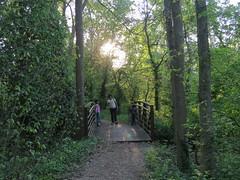 IMG_4371 (mohandep) Tags: flowers trees plants nature scenery walk wildlife families birding stlouis forestpark