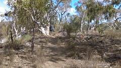 Para Wirra 35 (WEA Ramblers) Tags: hiking australia bushwalking southaustralia parawirra yattalunga fayharding