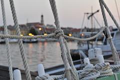 Betina Hafen
