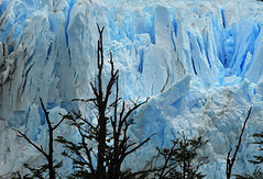 Blue Ice (Surreal McCoy (Alvin Brown)) Tags: ice argentina glacier perito moreno