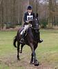2016 Horses Hunting (Steenvoorde Leen - 2.7 ml views) Tags: maarsbergen doorn utrechtseheuvelrug 2016 landgoed netherlands pferde paarden springen cross horse horses hindernis fench jumping reiten hunting huntertrails cheval