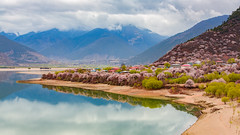Nyingchi, Tibet -  (Derek Chan@HK) Tags: china canon photography landscapes tibet  linzhi 70200l nyingchi  5d3