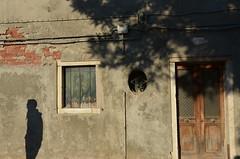 figure on the wall (Hayashina) Tags: door shadow italy texture window wall italia murano