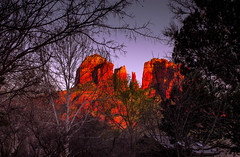 Guarded Cathedral (John A. McCrae) Tags: sunset arizona color tree nature landscape outdoors colours pentax sedona redrock cathedralrock arizonasycamore fremontcottonwood crescentmoonranchpark