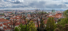 Sea of roofs from the Castle (Rory Prior) Tags: city panorama spring cityscape rooftops prague roofs czechrepublic praguecastle