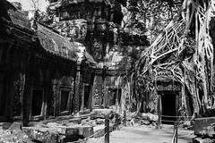 (Domy Kamsyah) Tags: blackandwhite bw canon asia cambodia explore traveling