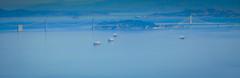 Aerial view of SF Bay Bridge - San Francisco CA (mbell1975) Tags: ocean sf sanfrancisco california ca bridge water boats bay us san francisco view unitedstates sfo cove ships aerial calif cal millbrae