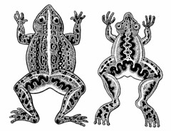 Two ridiculous frogs (Don Moyer) Tags: moleskine ink notebook drawing frog moyer brushpen donmoyer