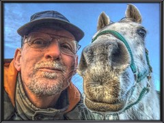 Gewoon pret (gill4kleuren - 11 ml views) Tags: horse white me beauty fun outside happy riding together gill anisa paard pret hengst arabier