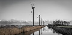 Dutch landscape with turbines
