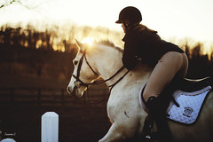 (suzcphotography) Tags: winter light sunset horse english canon 50mm jumping riding pony jumper hunter lesson equestrian t3i engligh suzcphotography