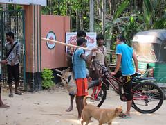 IMG_6920.jpg (Kuruman) Tags: sylhet bangladesh srimangal