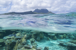 Hidden Beneath the Tropical Sea and Sky [Explore]