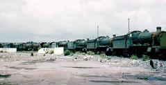 desolation at barry (midcheshireman) Tags: wales train steam barry locomotive scrapyard scrap woodhams