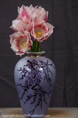 Minne av min mor (Borglin.M) Tags: rosa blommor vita röda vas närbild tulpaner blomvas blommorivas bukettblommor buketttulpaner handmåladvas mammasvas