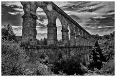 Aqeducte de les Ferreres, pont del Diable de Tarragona (saentic) Tags: bridge blackandwhite bw black blancoynegro contrast dark nikon aqueduct devil lightandshadow blackdiamond whiteandblack darkphoto nikonistas