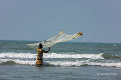 Fisherman (MRA Rigan) Tags: fisherman bangladesh bayofbengal seabeach coxsbazar catchingfish bangladeshivillage bangladeshiphotographer bangladeshiphoto fishinginsea bangladeshifisherman