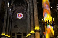 Catedral de Mallorca (NFTOMY) Tags: blue red espaa glass arquitectura basilica catedral iglesia colores stained reflejo vitreaux mallorca templo vitrais vitral estructuras estructura columnas roseton gtico