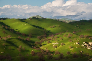 Rolling Hills of Kern County